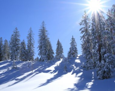 Winter Holidays Tannheimer Tal